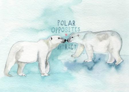 Polar Opposites Image