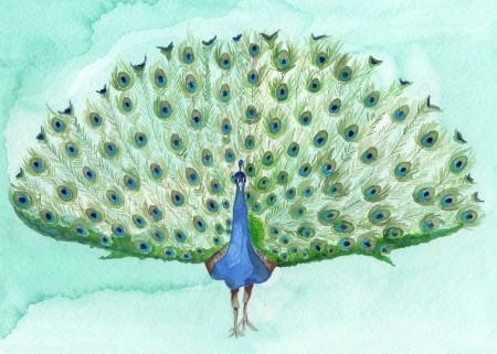 Ruffle My Feathers Image