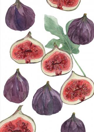 Figgy Pudding Image