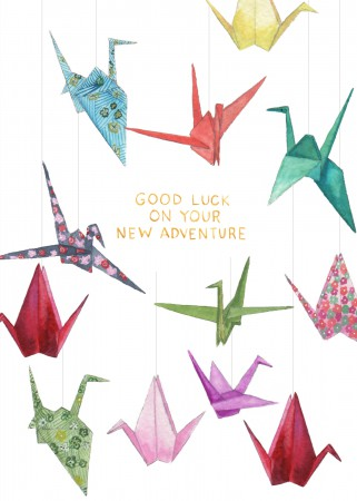 Your New Adventure Image