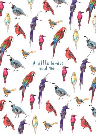 A Little Birdie Image