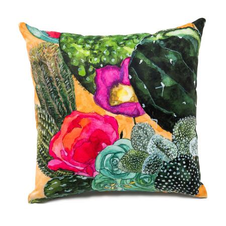Botanical Cactus Image