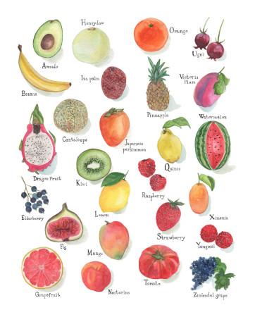 Alphabet Fruit Image